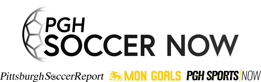Combined PSN logo